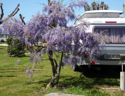 Campings La riviere - Talais