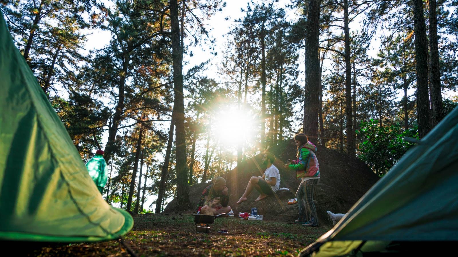 Camping 100% nature médoc