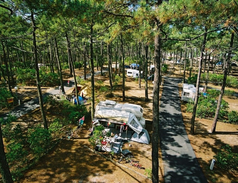 Campings Yelloh Grands les pins - Lacanau