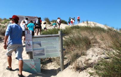 Visites accompagnées dunes le verdon sur mer