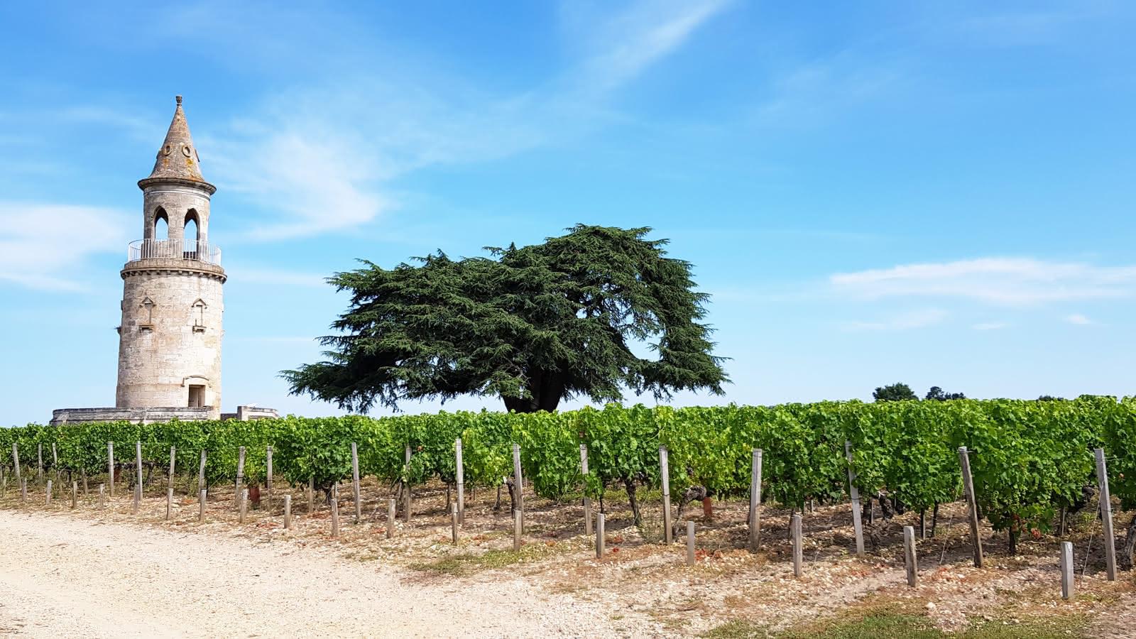 (c) Médoc Atlantique Route des vins