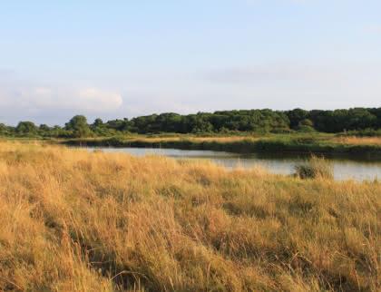 Le Marais du Logit