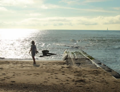 Les cantines Le Verdon-sur-Mer - © Médoc Atlantique