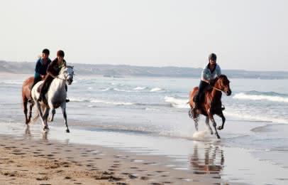 chevaux-soulac-medoc-atlantique