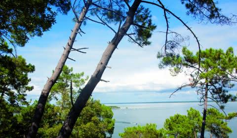 Sentier du lac Maubuisson - Médoc Atlantique
