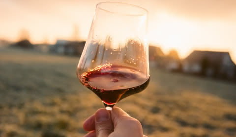 Déguster les vins du Médoc - Verre de vin Médoc Atlantique