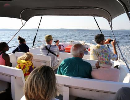 Visites guidées lacs du médoc