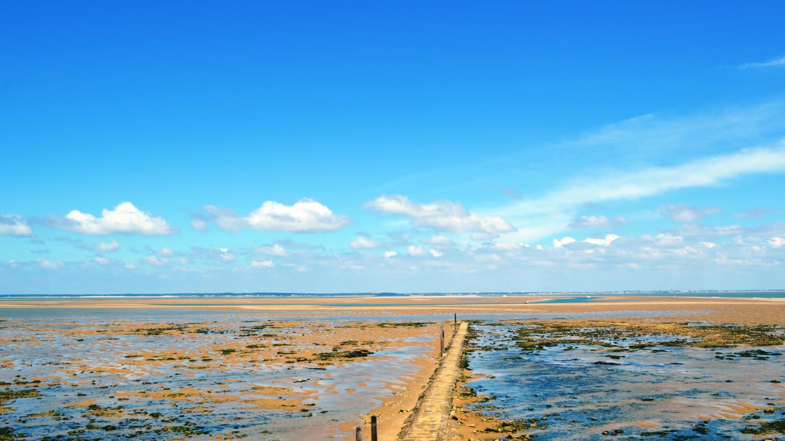 Vue de Cordouan - © Médoc Atlantique (8)