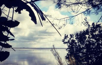 Autre vue sur le lac - (C) Médoc Atlantique