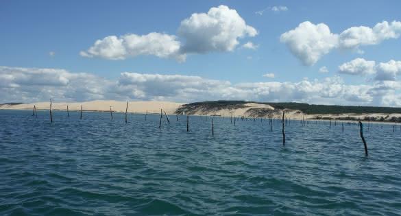 Arcachon dune
