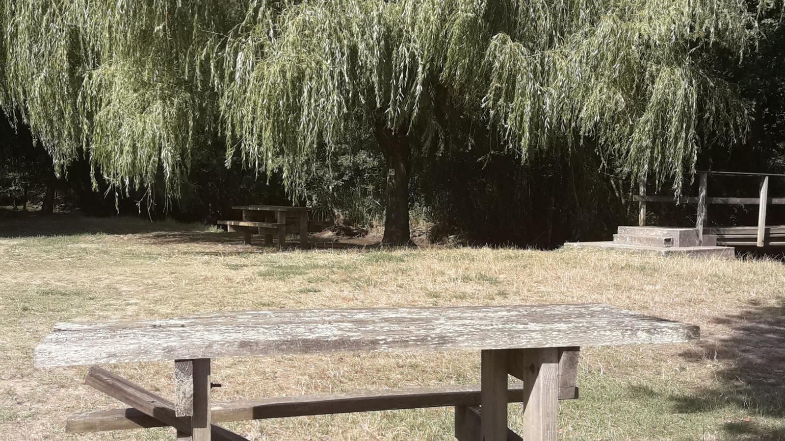 Aire-pique-nique-Pont-de-la-Brede
