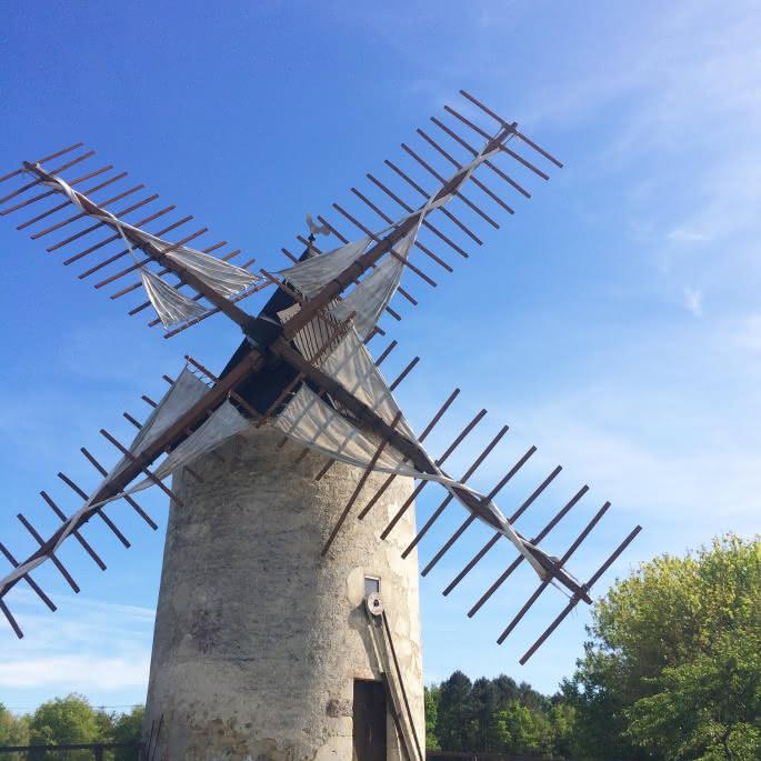 Moulin de Vensac - © Médoc Atlantique (2)