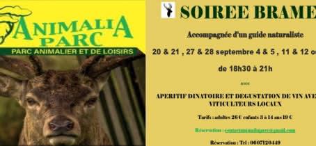 Soiree-brame3-4