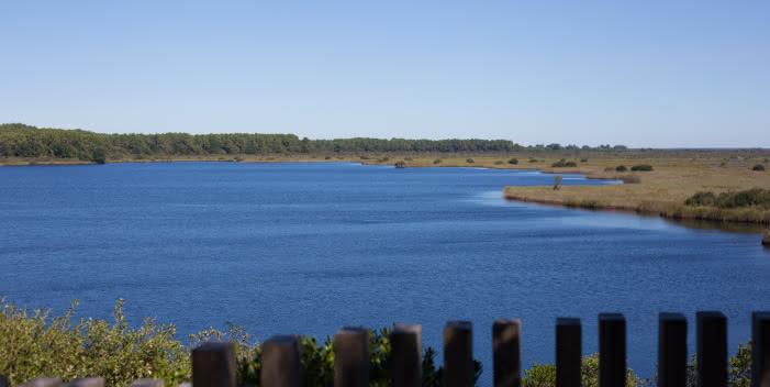 La Réserve Naturelle de l'étang de Cousseau