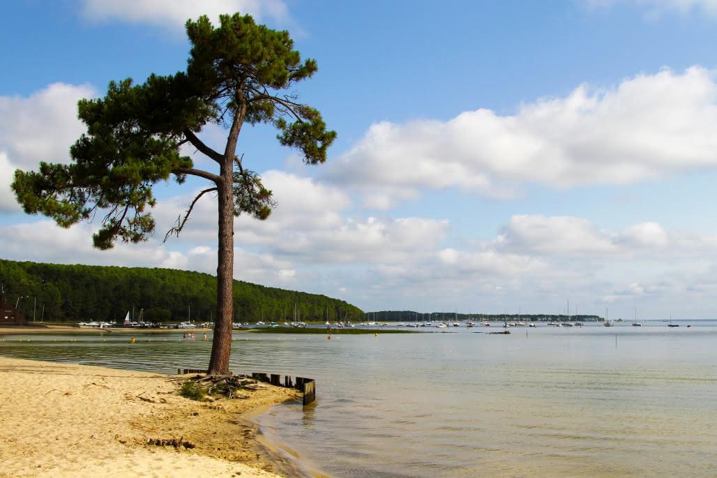Lac-de-Carcans