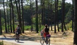 Vélodyssée - Hourtin au Bassin
