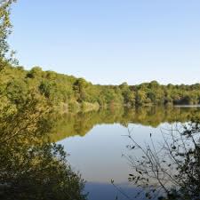 Lagune-de-Contaut-----Medoc-Atlantique--19--145d6e93c77a431c8fd2e100e2f62443