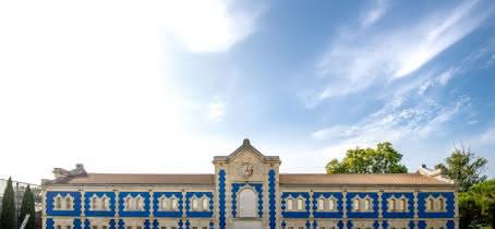 Château d'Arasc 3 Chai bleu