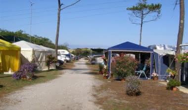 Naujac-sur-Mer - Camping du Pin Sec