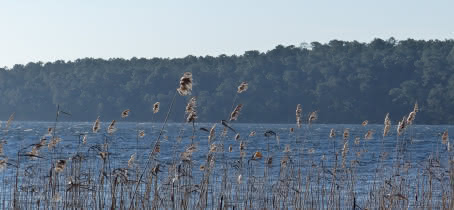 Vue sur le lac piqueyrot