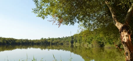 La Lagune de Contaut