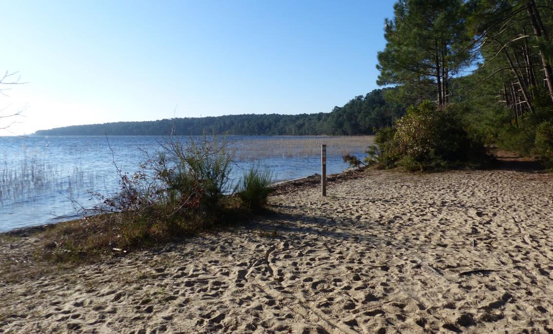plage sentier de la lobélie