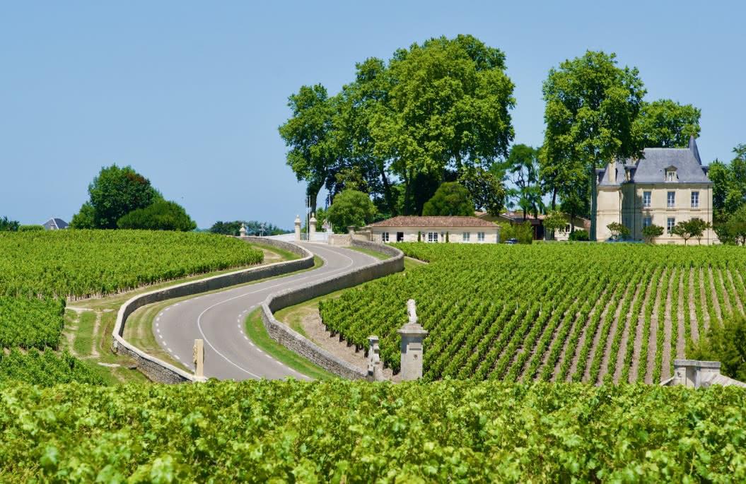 Pascal, Wine & Co 5