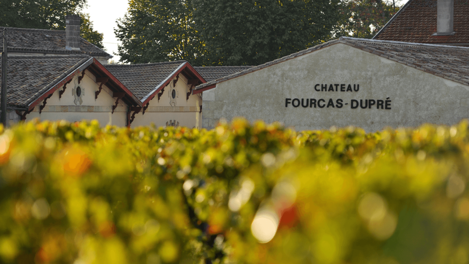Château Fourcas Dupré 1