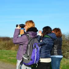 Observation_Oiseaux2