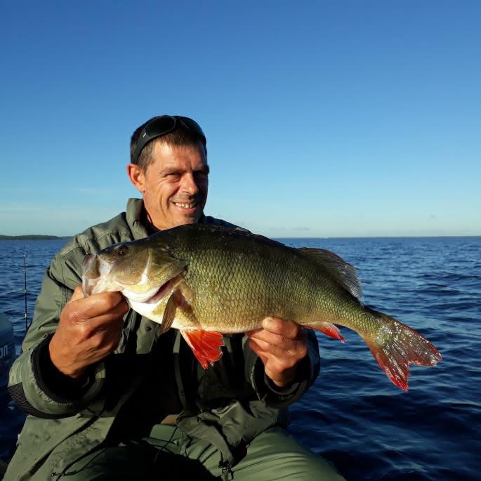 Nicolas Durand Moniteur, guide de pêche - Hourtin