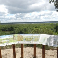 Reserve-Dunes-et-Marais-d-Hourtin-1