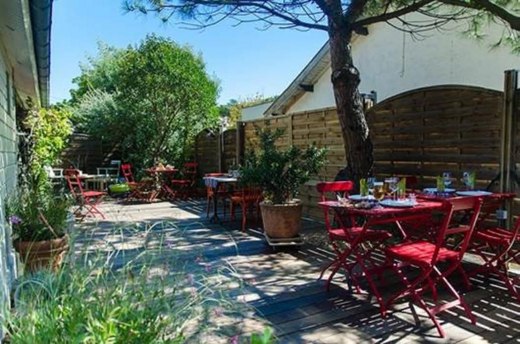 Restaurant-le-chat-sur-le-toit-Lacanau1-2