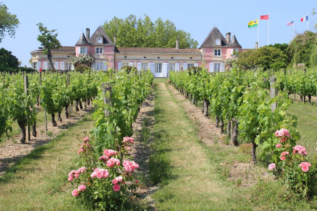 Chateau-Loudenne4-2