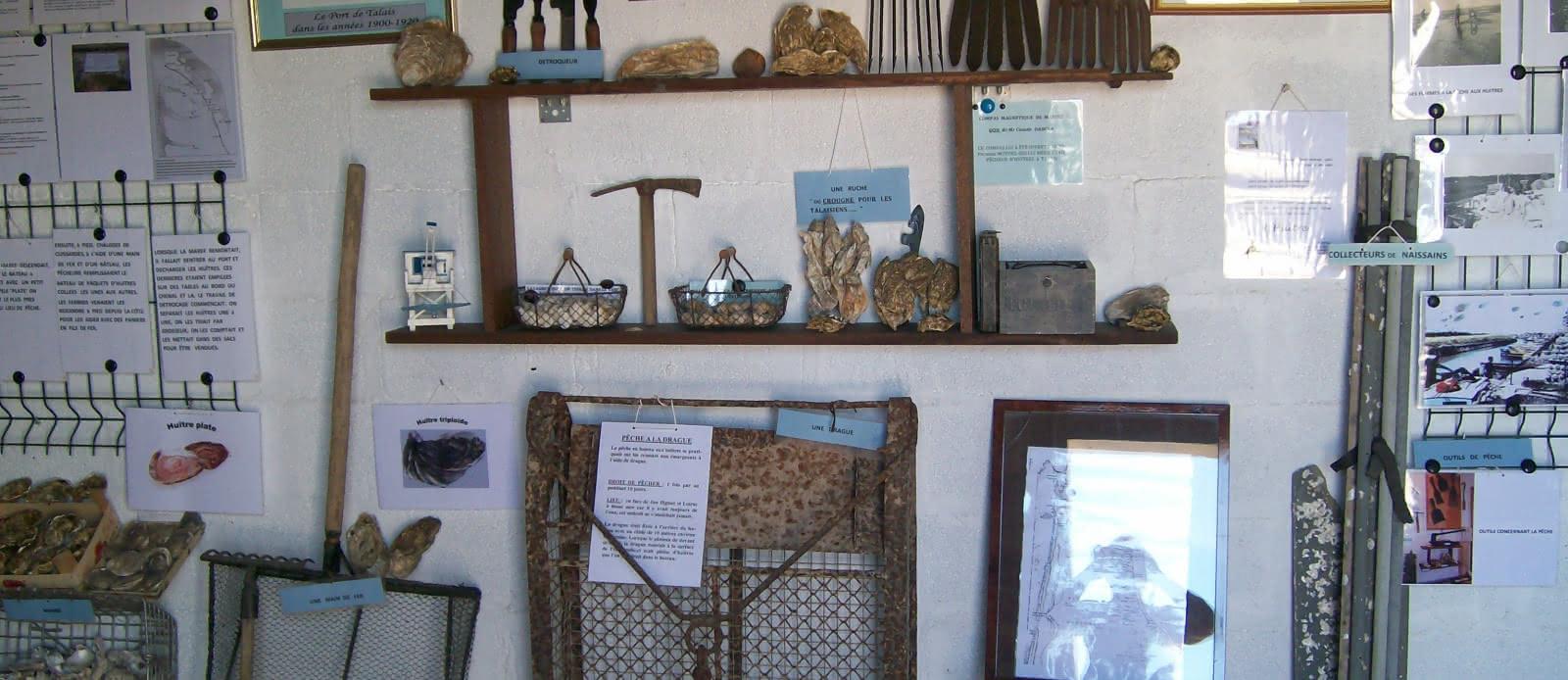 musée de l'huitre espo